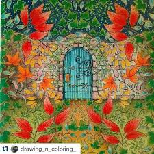 Coloring Book Adult Johanna Basford Secret Garden Pencil Art Zentangle Enchanted Forest Books Tips