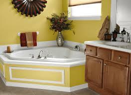 Beautiful Colors For Bathroom Walls by Bathroom Design Scenic Wall Color Small Bathroom Remodel Carpet