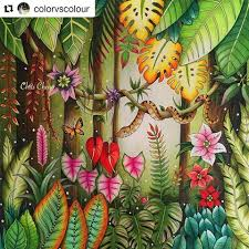 Magical Jungle Colored By Chris Cheng Who Offers Video Tutorials Online Johanna Basford Is The Artist