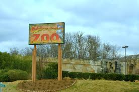 Rainforest Zoo Located in the heart of the beautiful Smoky