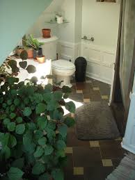 Best Plant For Bathroom by Plants For Bathrooms Plants For Bathroom Bathroom Best Plants