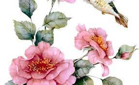 582 Best Flowers Images Watercolor Drawing