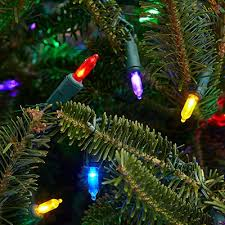 Walgreens Christmas Trees 2014 by Tree Lights For Christmas Rainforest Islands Ferry