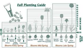 bulb planting guide southern states cooperative