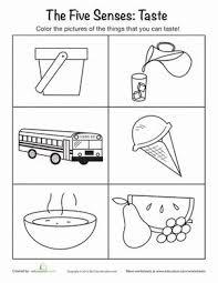 1000 Ideas About Senses Preschool On Pinterest