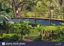 National Tropical Botanical Garden at Lawai Kauai Hawaii couple