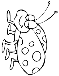 Free Ladybug Coloring Page