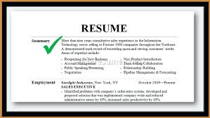 Summary For Resume Professional Examples Statement 2016