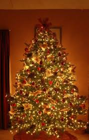 Evergleam Aluminum Christmas Tree by 142 Best Christmas Trees Images On Pinterest Xmas Trees