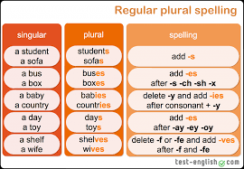 a an plurals – singular and plural forms Test English