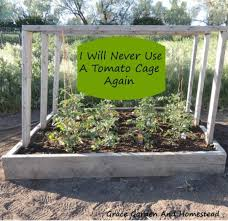 If I Grew A Smaller Amount Of Tomatoes This Would Be The Tomato Cage My Dreams