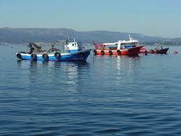 Pesca Artesanal Wikipedia La Enciclopedia Libre