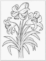 Lavender Spring Flower Coloring Pages