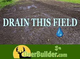 how to drain a food plot field by deerbuilder