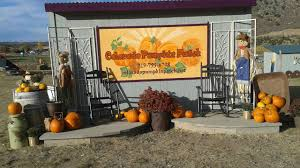 Colorado Springs Pumpkin Patch 2017 by Colorado Pumpkin Patch 17405 Walden Way Colorado Springs Co