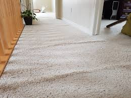 Stop Squeaky Floors Under Carpet by Carpet Repairs Fix Stretch And Installation Services Calgary