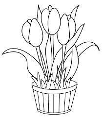 Coloriage Tulipe Les Beaux Dessins De Fleurs à Imprimer Et Colorier