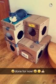 Diy Cat House Made Of Cardboard Boxes