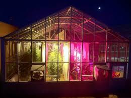 how led lighting affects tomatoes quality ledinside