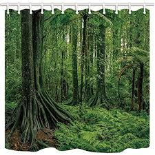 tropischer regenwald pflanzen baeume test vergleich 2021
