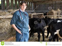 Portrait Of Vet In Barn With Cattle Royalty Free Stock Image ... Professional Senior Vet Standing Near Calves Barn In Livestock Veterinary Skills Center Lincoln Memorial University About Us Meadowridge Hosp Groton Ny Red Hospital Vetenarian Dahlonega Ga Usa Houses Missing Family House Old Wooden Shed Pine Path Photo Gallery Mccmaple Woods Tech Hosts Successful Haunted Farmer And Vet With Turkey In Barn Stock Royalty Free Image Midsection Of Female Examing Horse At Project 365 Day 16 Vintage Emily Carter Mitchell Sugar Factory Clinic Horse Stethoscope Photos