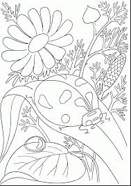 Astonishing Printable Insect Coloring Pages With Free Flower For Adults And