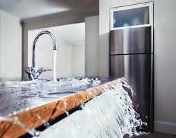 Unclogging A Kitchen Sink With A Disposal by What To Do If Your Dishwasher Is Not Draining