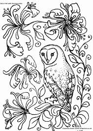 Owl Coloring Page Barn With Honeysuckle