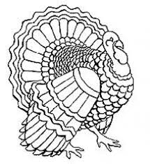 Line Drawings Of Wild Turkeys