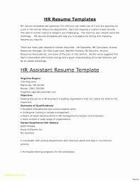 Best Executive Resume Format Lovely Resume Format Basic Best Example ... First Job Resume Templatesjob Images Hd Basic Template Microsoft Word Yyjiazhengcom Lovely Free Templates Inspirational 3 Actually Localwise Formats Jobscan Example 5 Best Samples Objective Examples Mplates You Can Download Jobstreet Philippines For Highschool Students Awesome Photos Format Sample Lightning Link Fresh Elegant 017 Ideas 201 Simple Doc Download Wwwautoalbuminfo