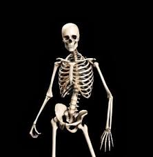 Kxvo Pumpkin Dance Spooky Scary Skeletons by Halloween Know Your Meme