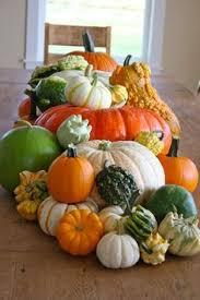 Hartsburg Pumpkin Festival 2015 Dates by Pumpkin Recipes Martha Stewart Fall Pumpkin Pumpkin And Ombre