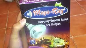 Bearded Dragon Heat Lamp Wattage by Megaray Uva Uvb Heat Lamp 100 Watt Review Unbox Youtube