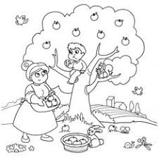 Advanced Coloring Page Picking Apples