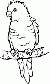 Animal Coloring Pages For Kids Cute Kitten