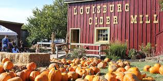 Faulkner County Pumpkin Patch by Kansas City U0027s Pumpkin Patches Visit Kc Com What U0027s Going On In