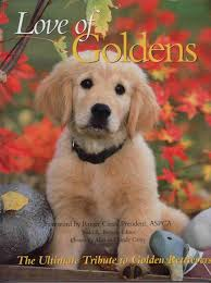 LOVE OF GOLDENS The Ultimate Tribute to Golden Retrievers