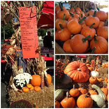 Pumpkin Festival Ohio by Fall In Ohio U2013 Travel With Red Roof