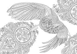 Gorgeous Inspiration Best Adult Coloring Pages Books Thanks To Everyone Who Already Owl