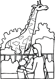 Giraffe Coloring Pages For Adults Family Zoo Look Page Picture Printable Online