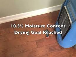 Buckled Wood Floor Water by Drying Hardwood Floors Water Damage Dasmu Us