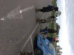 Greyhound Compassion Sponsored Walk In Warwick