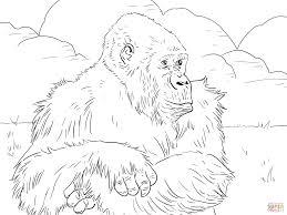 Mountain Gorilla Coloring Page