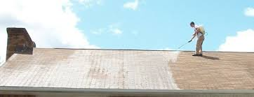 how to make the roof cleaner used in the