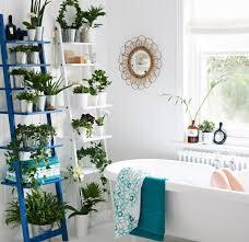 Best Plant For Bathroom bathroom mesmerizing cool ikea bathroom ladder plant