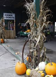 Central Illinois Pumpkin Patches by Local Pumpkin Patches To Explore Recreation Herald Review Com