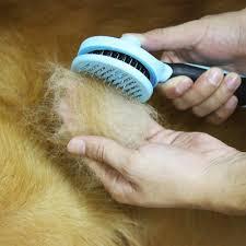 Horse Hair Shedding Tool by Dogs Vitrine Trendyvitrine
