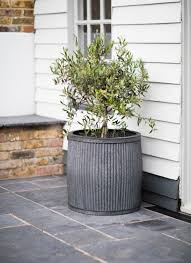 The Extra Large Vence Planter Can House Larger Plants Or Even Small