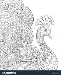 Peacock Coloring Book Pages To Print Page Peacock Coloring Pages