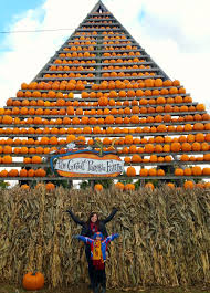 Pumpkin Farm Clarence Ny by Western New Yorker